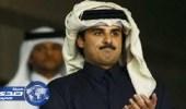 «الرومي»: الشعب القطري مستثنى من التعامل مع حكومته