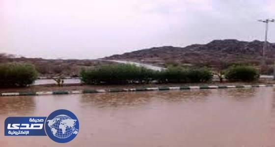 هطول أمطار على محافظة بارق