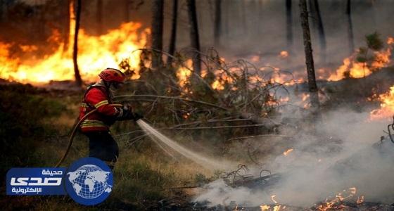 مقتل وإصابة 39 شخصاً جراء حريق غابات وسط البرتغال