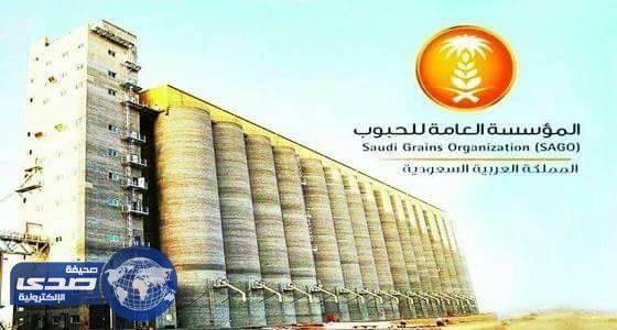 رفع نسبة المستفيدين من منتجات الدقيق في مكة والمدينة
