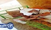 بالصور.. قصة مسن يعيش في «عشة» متهالكة بين مكة والباحة