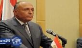 وزير الخارجية المصري يبحث مع نظيره الأردني اتخاذ خطوات ضد التصعيد الإسرائيلي بالقدس