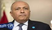 وزير الخارجية المصري يبحث مع أمين عام التعاون الإسلامي تطورات أوضاع المنطقة