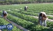 سلسلة مطاعم تتبرع بعشرة ملايين بيزو للمزارعين في إفتتاح متجرها الألف بالفلبين