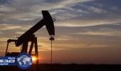 منذ 20 عام البترول يسجل أسوأ أداء له