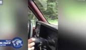 بالفيديو.. دٌب يطارد زوجان بسيارتهما