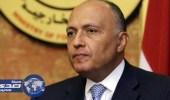 وزير الخارجية المصري: لا يمكن التسامح مع الدور التخريبي لقطر