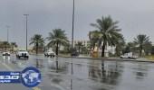 هطول أمطار خفيفة ومتوسطة على المدينة والطائف