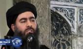 50 جلدة عقوبة من يتحدث عن موت البغدادي