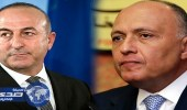 كواليس الاتصال المفاجئ بين وزيري خارجية مصر وتركيا