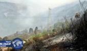 الحرائق تشتعل في مئات الهكتارات من الغابات في الجزائر
