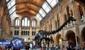 طفل عمره 10 سنوات يكتشف خطأ في أشهر متاحف بريطانيا