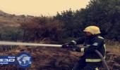 """بالصور.. """" مدني عسير """" يحاصر حريقين مختلفين في أشجار وحشائش"""