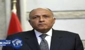 وزير الخارجية المصري يبحث مع نظيره الإيطالي علاقات التعاون الثنائية
