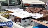 ضبط سيارة نقل صحف محملة بـ144 طبق بيض في أملج