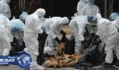 الفلبين تسجل أول إصابة بإنفلونزا الطيور