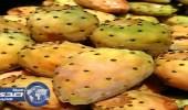 أمانة الطائف تصادر 500 عبوة فاسدة من التين الشوكي والطماطم