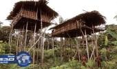 بالصور.. قبيلة سرية تسكن غابات غينيا تعرف عليها