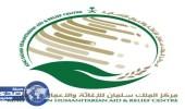 مركز الملك سلمان للإغاثة يتكفل بعلاج اللاجئين اليمنيين بجيبوتي