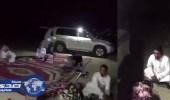 الحياة الفطرية تنفي تصوير فيديو الوعول داخل إحدى محميات الدولة