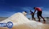 مليار دولار قيمة صناعة الملح في الولايات المتحدة