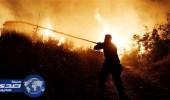 فرار الآلاف من حرائق غابات في شمال شرق أثينا