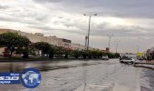 بالفيديو.. هطول أمطار خفيفة على أحياء العاصمة
