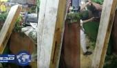 بالفيديو.. عامل يرش مبيد حشري على الخضروات والفاكهة