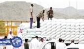 """"""" الحبوب """" تنتهي من ترسية استيراد 660 ألف طن شعير"""