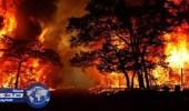 حريق ضخم يجتاح غابات جزيرة في اليونان