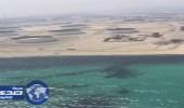 طوارئ في الخفجي تحسبًا لبقعة الزيت المتسربة من الكويت