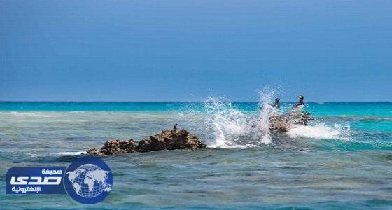 بلومبيرج: مشروع البحر الأحمر طفرة حقيقية على تنويع مصادر الدخل
