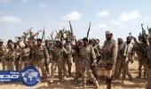 """الجيش اليمني يدمر آليات عسكرية للانقلابيين في """" نهم """""""