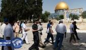 مستوطنون يقتحمون المسجد الأقصى وسط حراسة مشددة