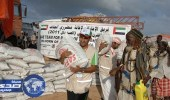 بعثة مساعدات إماراتية تبدأ مهامها في الصومال