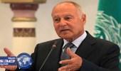 أبو الغيط: الحوثيون رفضوا مبادرات السلام ويواصلون الاعتداء بحق المدنيين