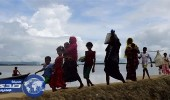 ارتفاع عدد مسلمي الروهينجا لـ 379 ألفا