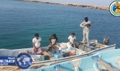 بالصور.. حرس الحدود يحبط تهريب ربع طن حشيش بجازان