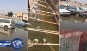 بالفيديو.. حي الوزيرية بجدة يغرق والسكان يناشدون خالد الفيصل التدخل