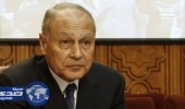 أبو الغيط يدين الهجوم الإرهابي في شمال سيناء