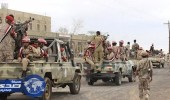الجيش اليمني يحقق تقدماً في جبهة ميدي