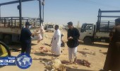 بالصور.. إزالة 127 مسلخا عشوائيا والقبض على 51 مخالفا في الرياض