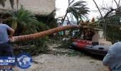 """بالصور.. إعصار """" إرما """" يدمر جزيرة ملياردير"""