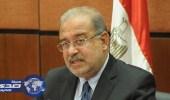 إسقاط الجنسية عن 3 مصريين لتجنسهم بالإسرائيلية دون ترخيص
