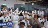 عودة 4500 حاج على 22 طائرة مصرية وسعودية من الأراضي المقدسة
