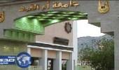 قبول 900 طالب وطالبة في الدبلوم التربوي بجامعة أم القرى