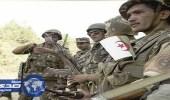 الجيش الجزائري يدمر مخابئ للإرهابيين شمال البلاد