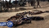 الاستخبارات العراقية: مقتل 43 داعشياً في قصف جوى بالأنبار