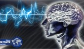 اكتشاف منطقة في المخ له علاقة بكراهية بعض الأشخاص
