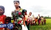 العفو الدولية تفرج عن صور حديثة لقرى محروقة في ميانمار